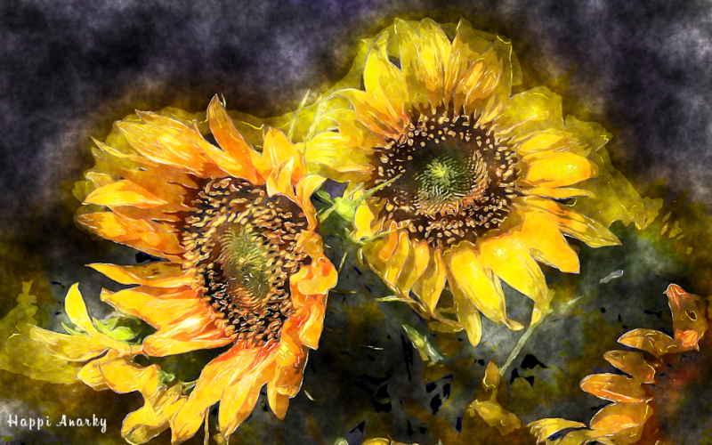 sunflowerz_small